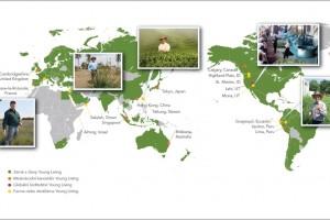 Фермы Янг Ливинг / Young Living по всему миру