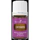 Cardamom — эфирное масло кардамон