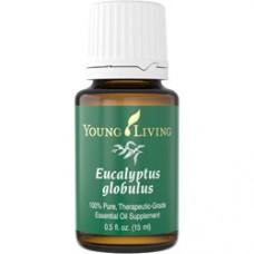 Eucalyptus Globulus - эфирное масло эвкалипта шаровидного