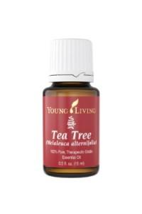 Tea Tree - эфирное масло чайного дерева Melaleuca Alternifolia
